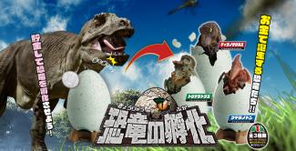 恐竜の孵化
